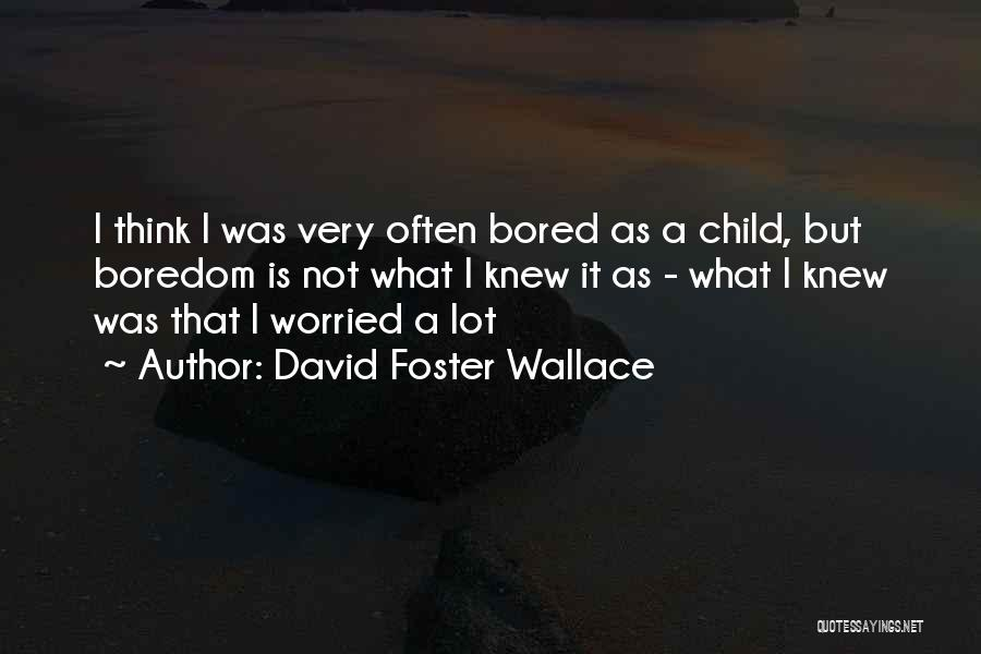 Worried Quotes By David Foster Wallace