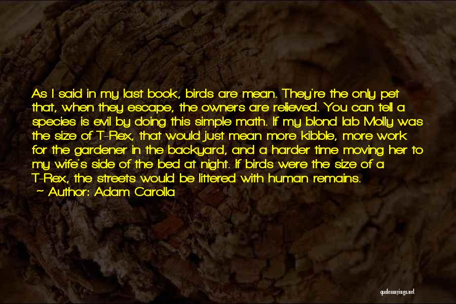 Would You Be My Wife Quotes By Adam Carolla