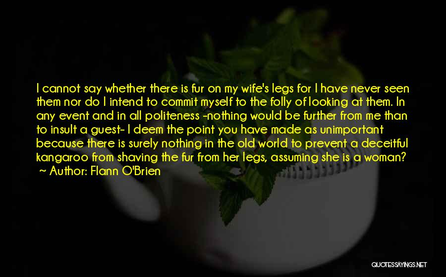 Would You Be My Wife Quotes By Flann O'Brien