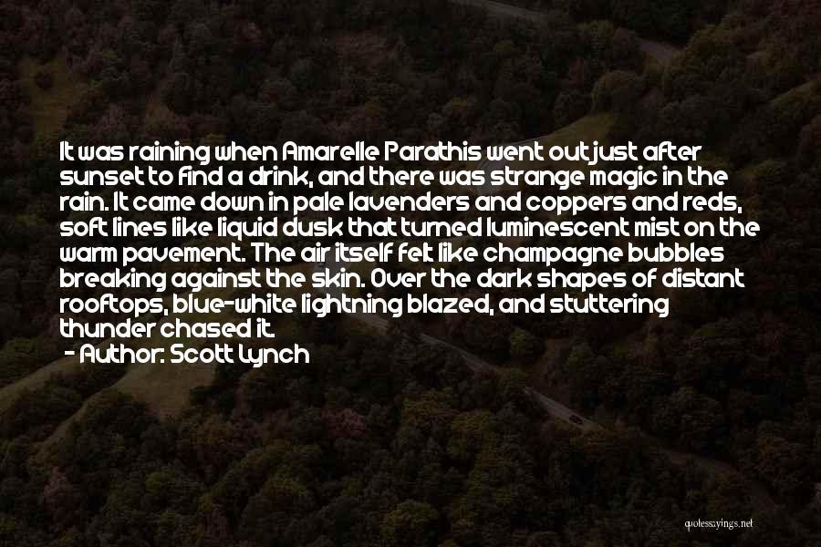 Wow It Raining Quotes By Scott Lynch