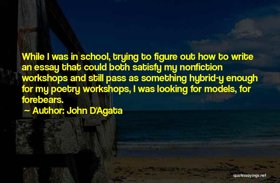 Writing Nonfiction Quotes By John D'Agata