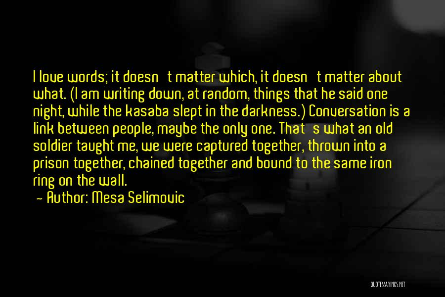 Writing On Wall Quotes By Mesa Selimovic