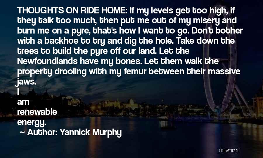 Yannick Murphy Quotes 1528439