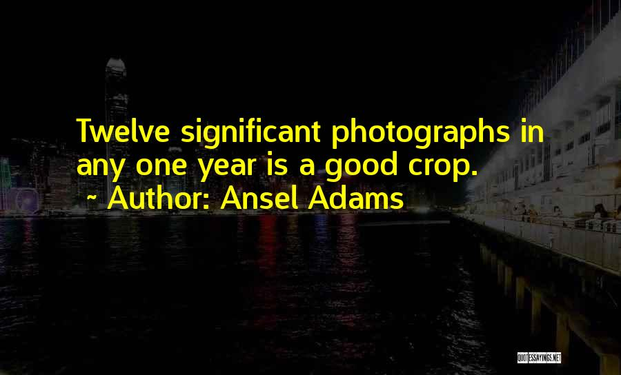 Year Twelve Quotes By Ansel Adams