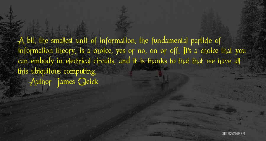 Yes Or No Quotes By James Gleick