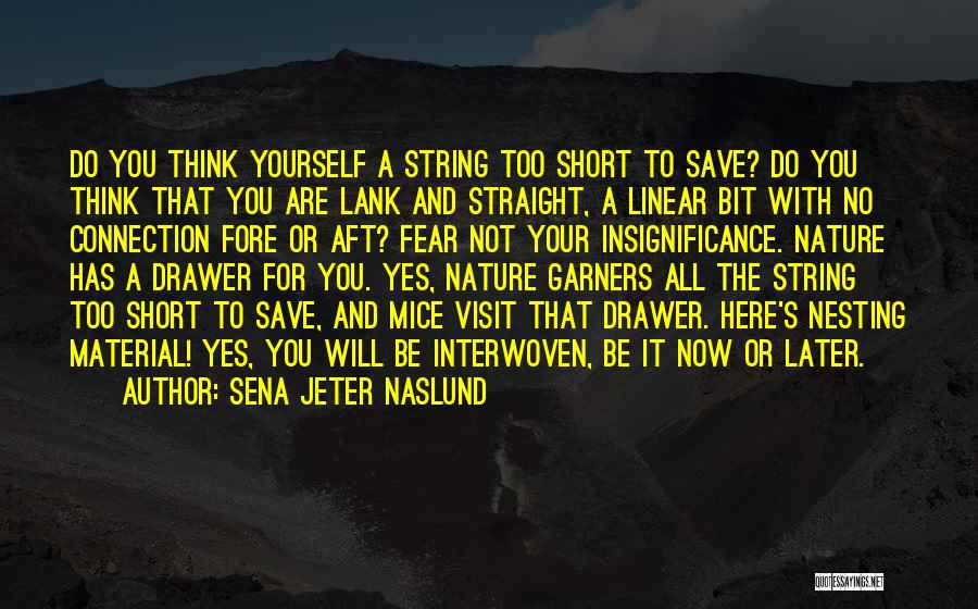 Yes Or No Quotes By Sena Jeter Naslund