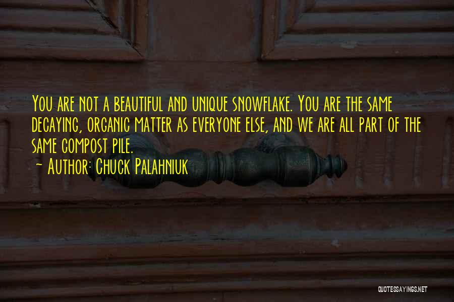 You All Are Beautiful Quotes By Chuck Palahniuk