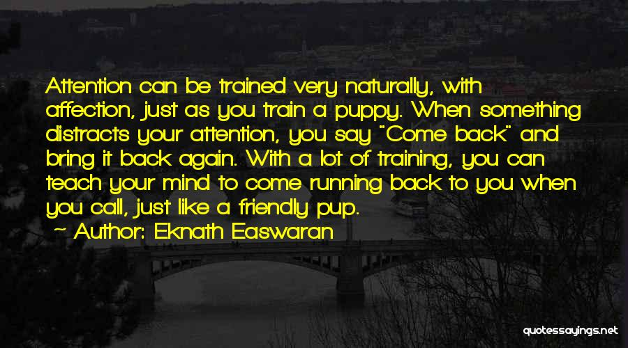 You And Your Puppy Quotes By Eknath Easwaran