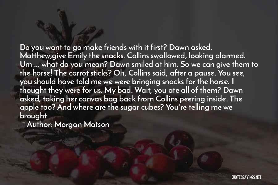 You Are Bad For Me Quotes By Morgan Matson