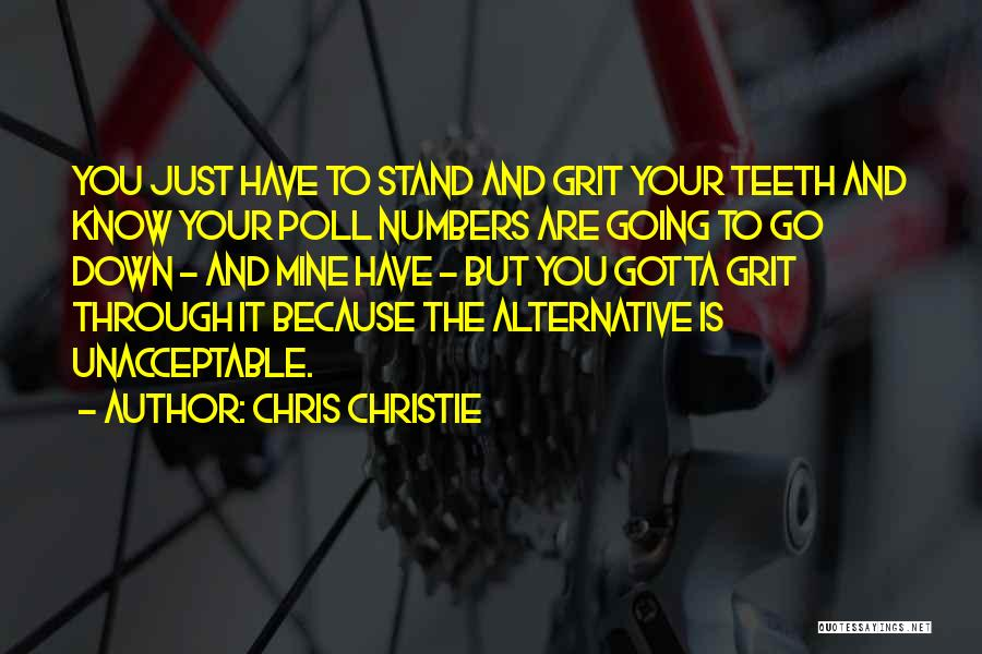You Are Just Mine Quotes By Chris Christie