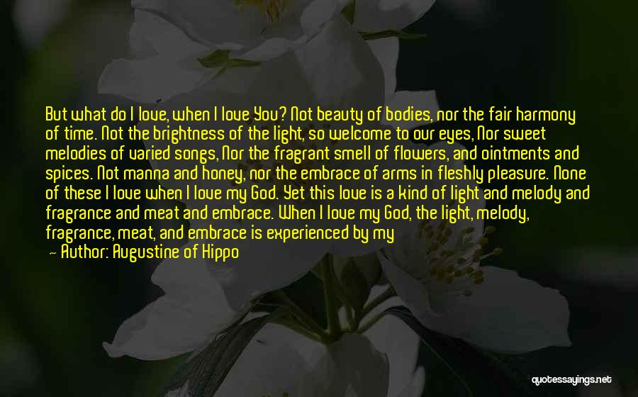You Are My Honey Quotes By Augustine Of Hippo