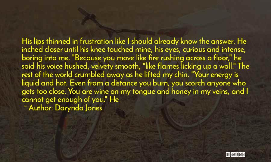 You Are My Honey Quotes By Darynda Jones