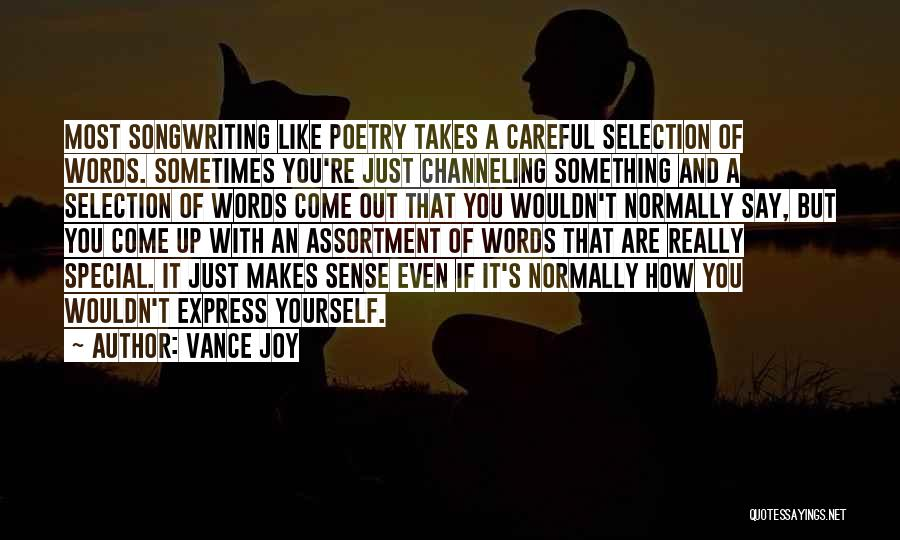 You Are Something Special Quotes By Vance Joy