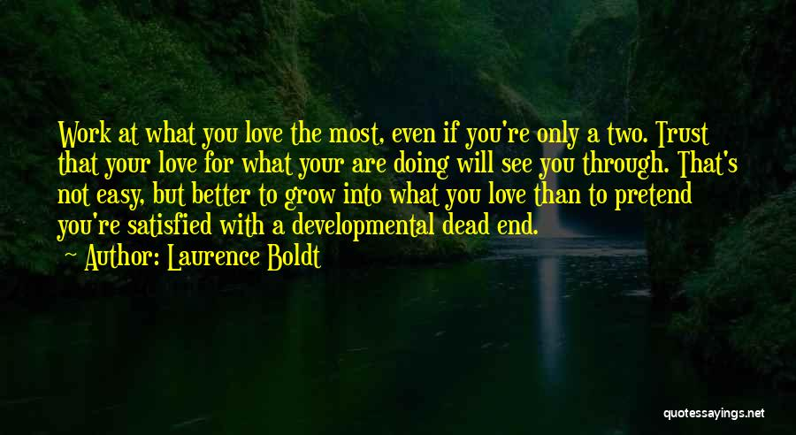 You Are The Only Love Quotes By Laurence Boldt