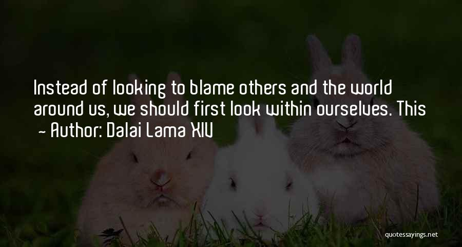You Are The Only One To Blame Quotes By Dalai Lama XIV