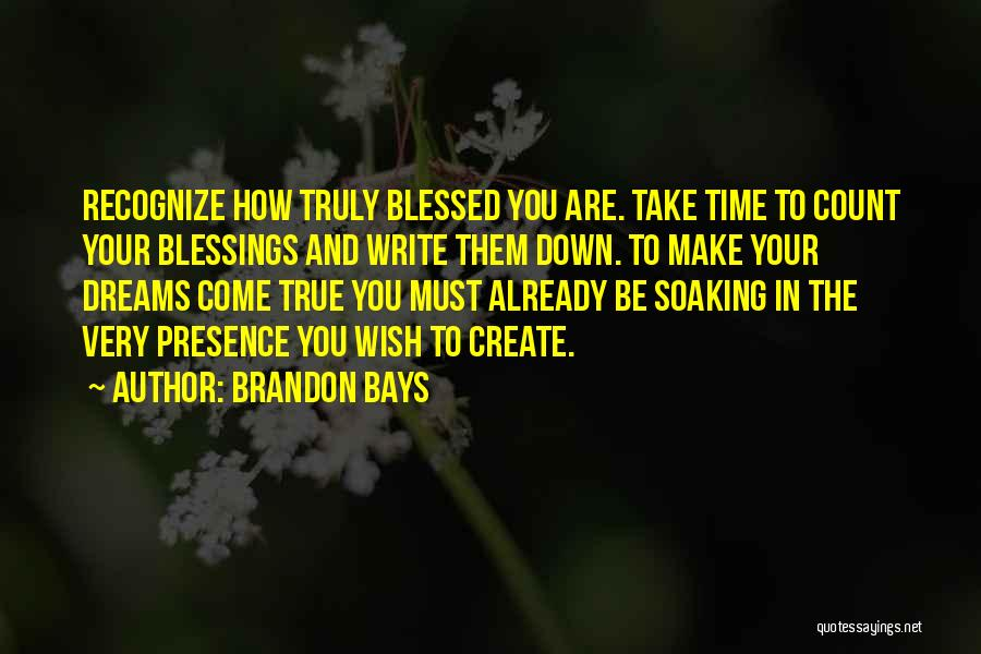 You Are Truly Blessed Quotes By Brandon Bays