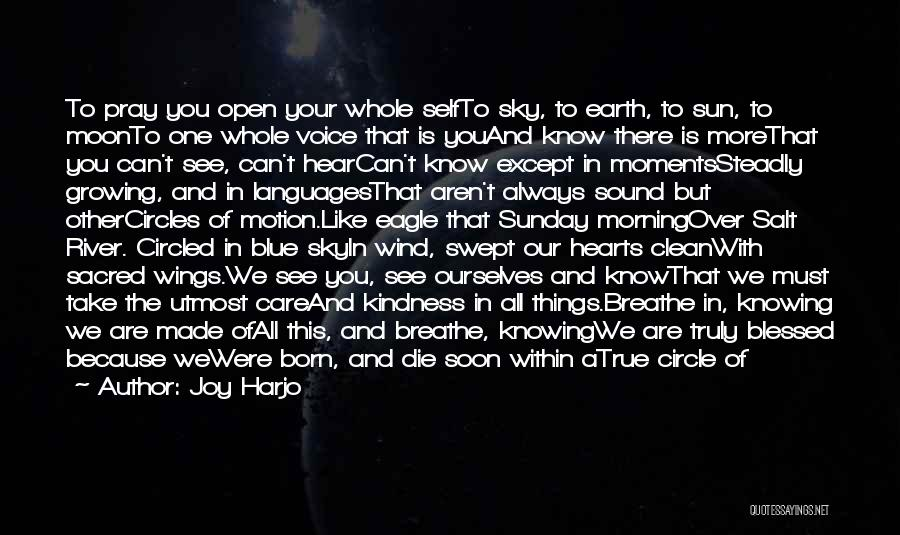 You Are Truly Blessed Quotes By Joy Harjo