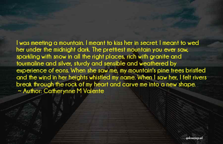 You Break Her Heart Quotes By Catherynne M Valente