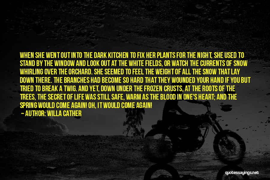 You Break Her Heart Quotes By Willa Cather