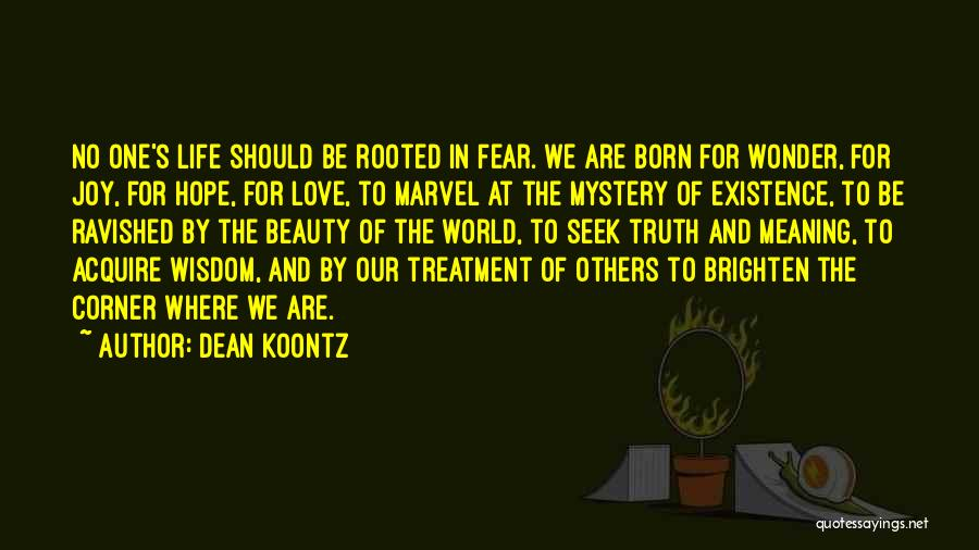 You Brighten My Life Quotes By Dean Koontz