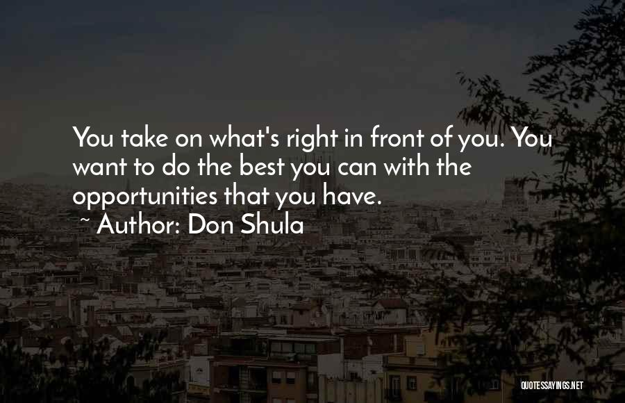 You Can Do What You Want Quotes By Don Shula
