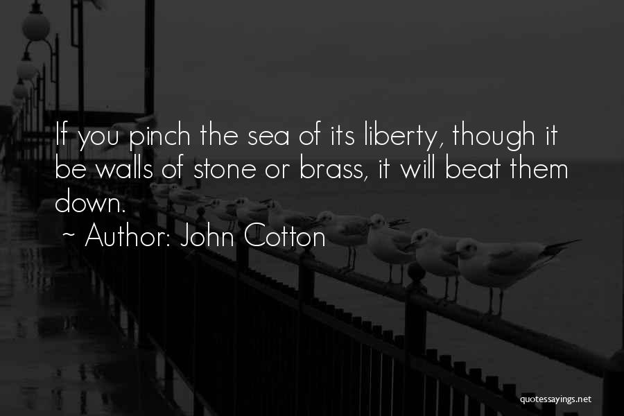 You Can't Beat Me Down Quotes By John Cotton