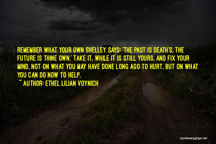 You Can't Fix The Past Quotes By Ethel Lilian Voynich