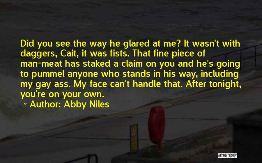 You Can't See My Face Quotes By Abby Niles