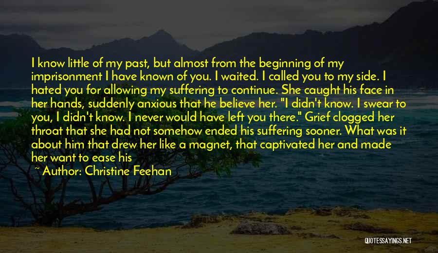 You Can't See My Face Quotes By Christine Feehan