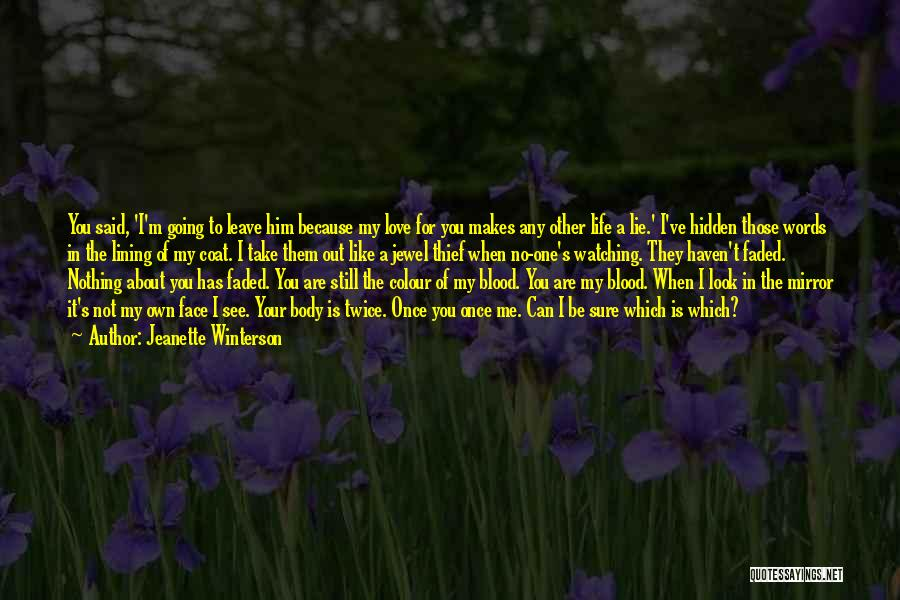 You Can't See My Face Quotes By Jeanette Winterson
