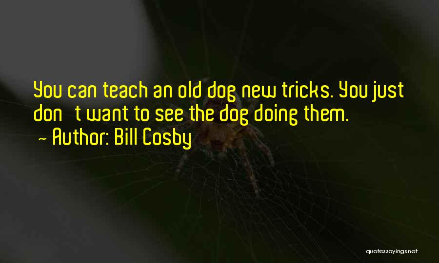 Top 12 You Can't Teach An Old Dog New Tricks Quotes & Sayings