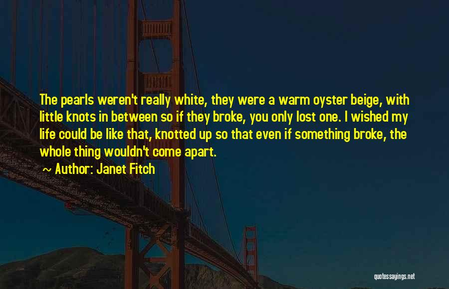 You Come In My Life Quotes By Janet Fitch