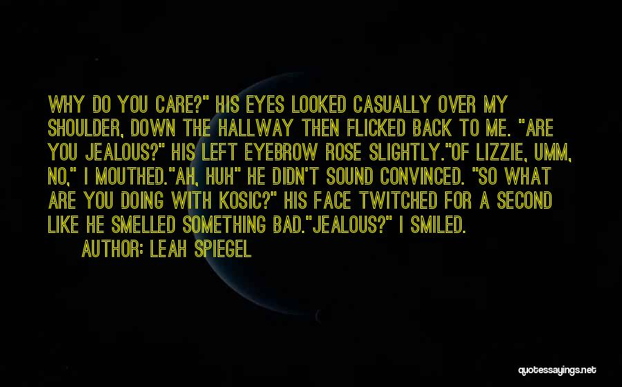 You Didn't Care Quotes By Leah Spiegel