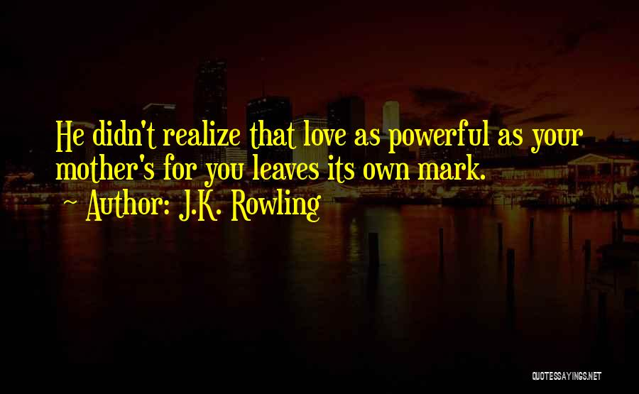 You Didn't Realize What You Had Quotes By J.K. Rowling