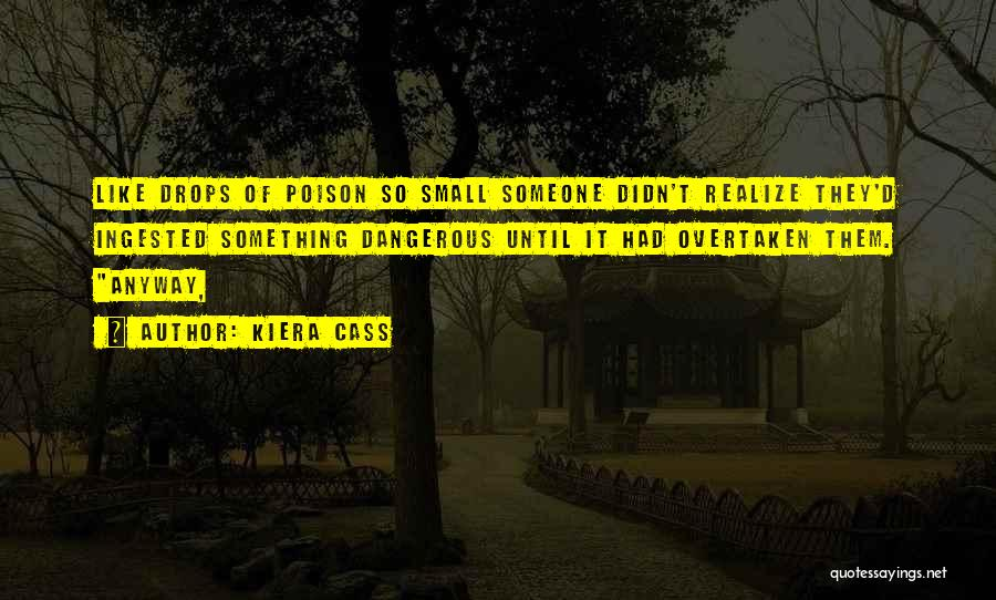You Didn't Realize What You Had Quotes By Kiera Cass
