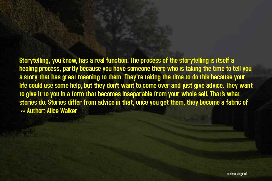 You Don't Know Me Or My Story Quotes By Alice Walker