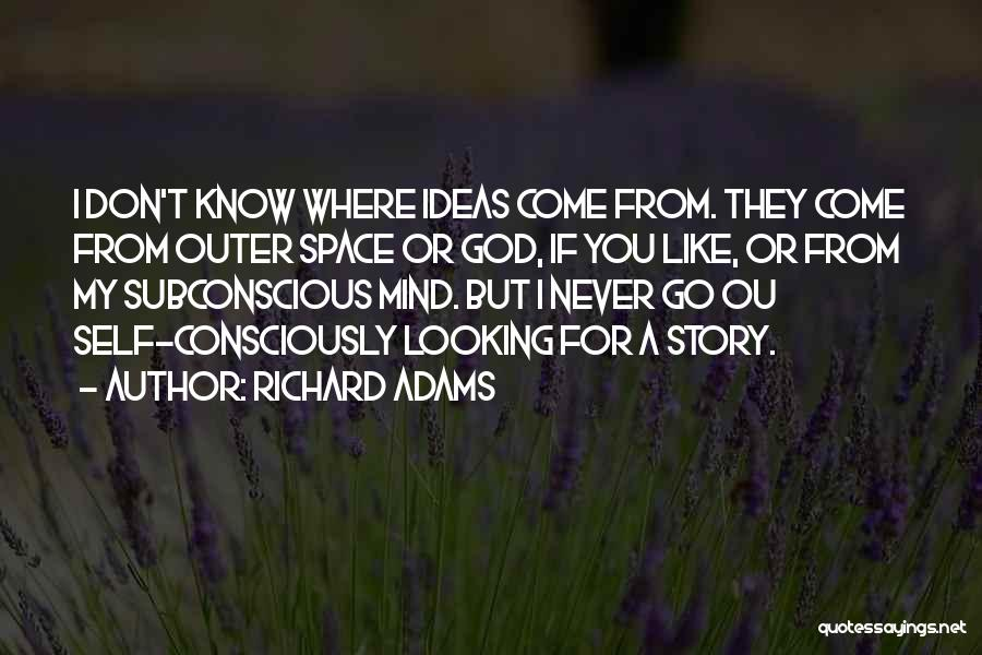 You Don't Know Me Or My Story Quotes By Richard Adams