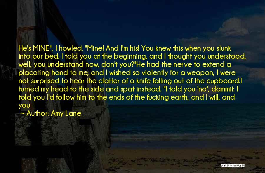 You Don't Understand My Love Quotes By Amy Lane