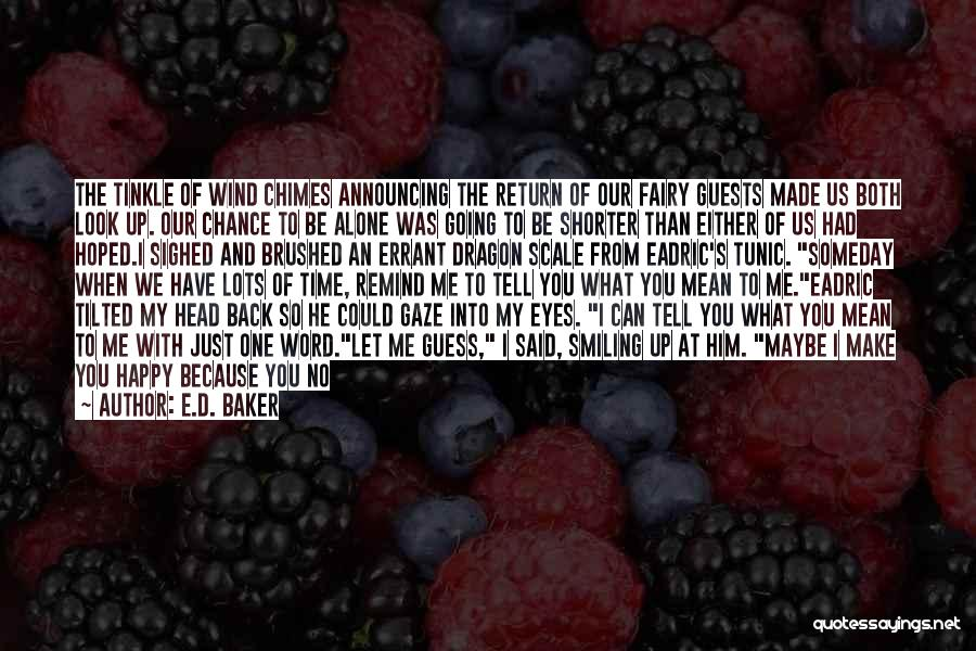 You Had Your Chance With Me Quotes By E.D. Baker