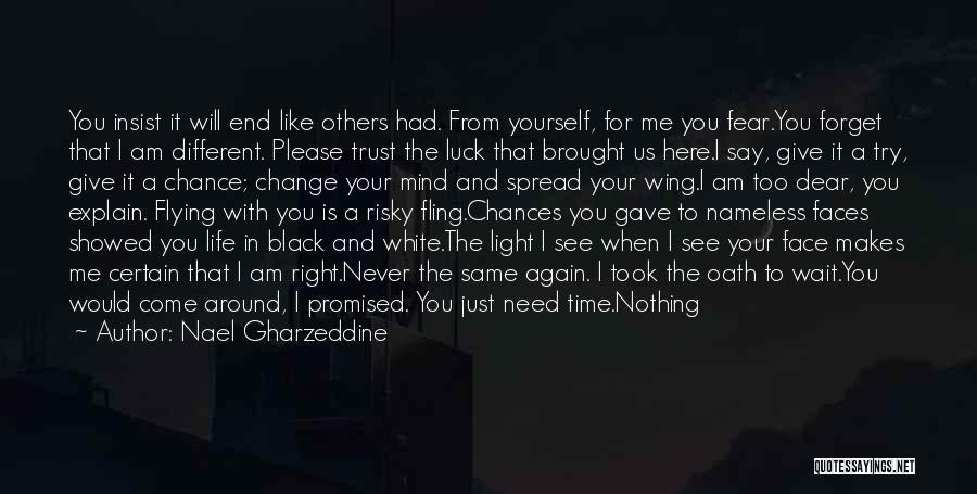 You Had Your Chance With Me Quotes By Nael Gharzeddine
