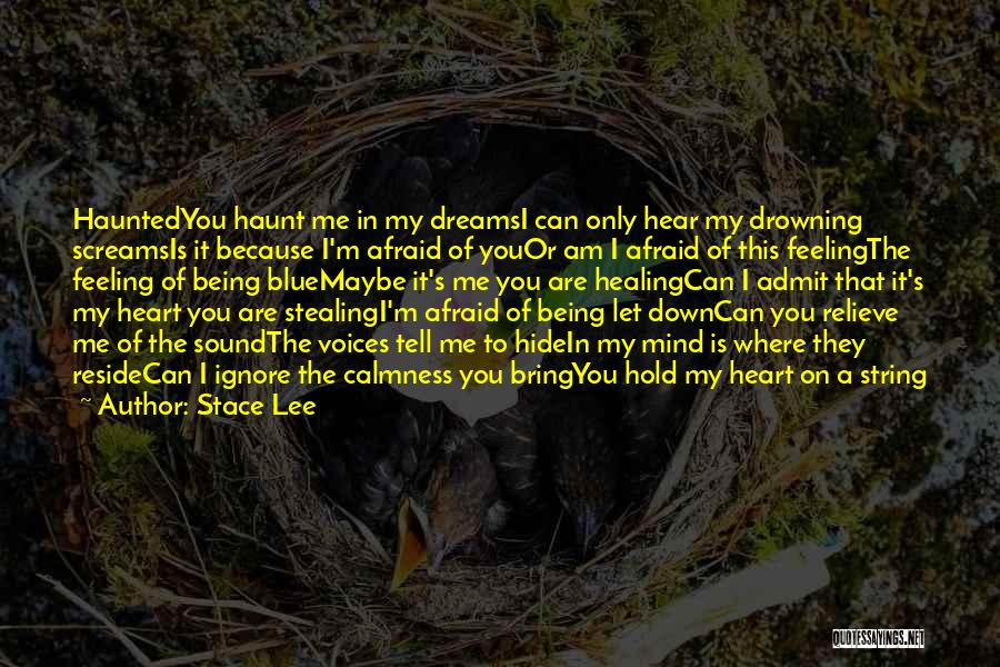 You Haunt Me Quotes By Stace Lee
