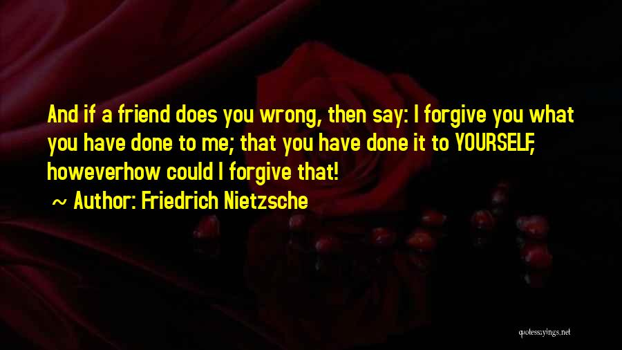 You Have Done Me Wrong Quotes By Friedrich Nietzsche
