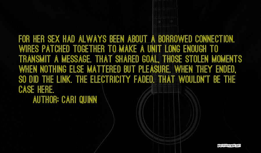 You Have Stolen My Heart Quotes By Cari Quinn