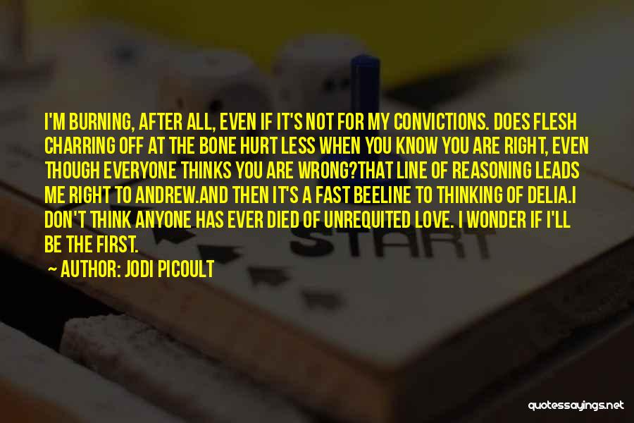 You Hurt Me First Quotes By Jodi Picoult