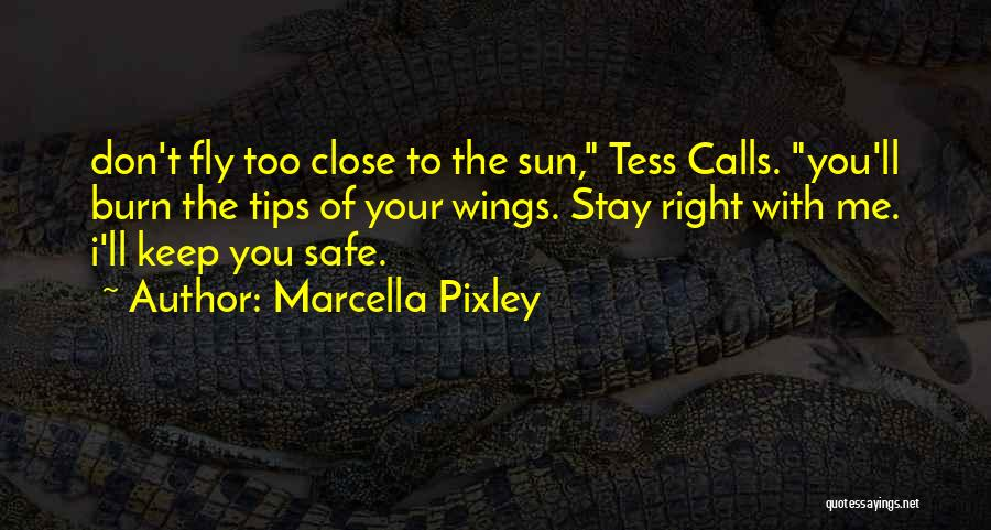 You Keep Me Safe Quotes By Marcella Pixley