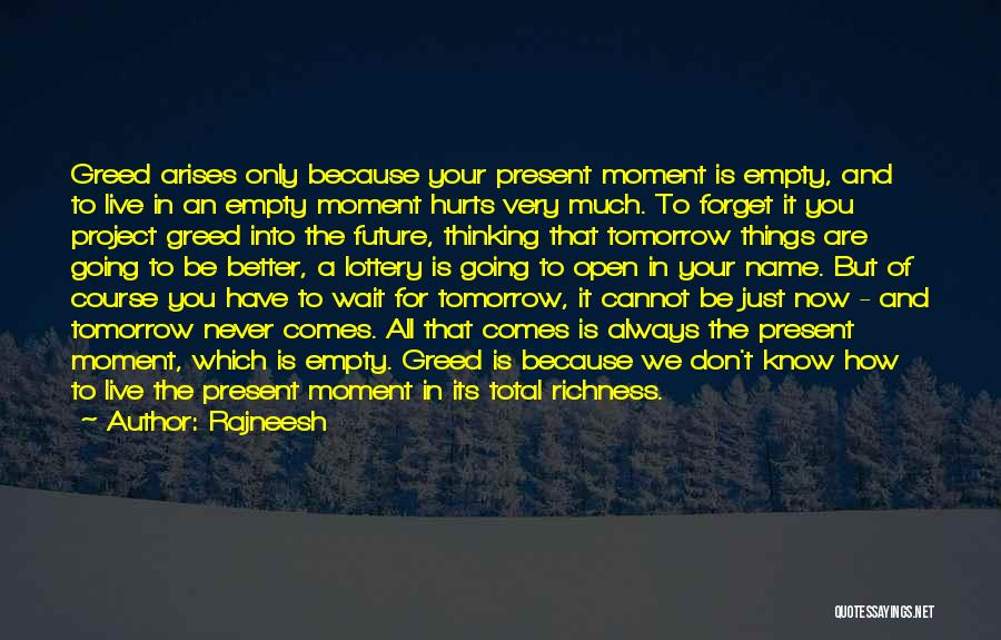 You Know That Moment Quotes By Rajneesh