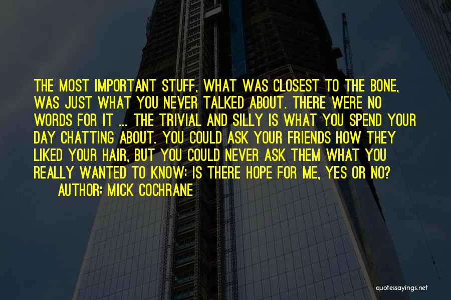 You Liked Me Quotes By Mick Cochrane