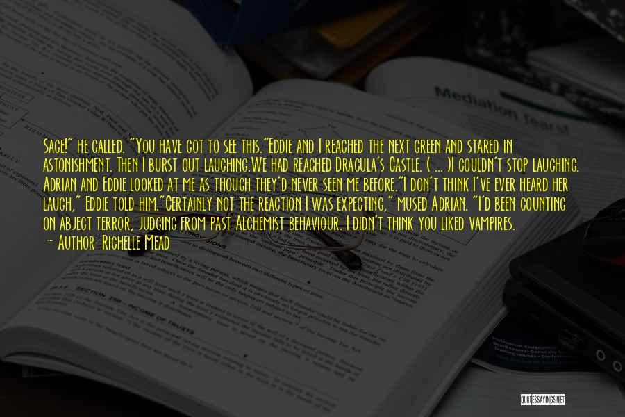 You Liked Me Quotes By Richelle Mead