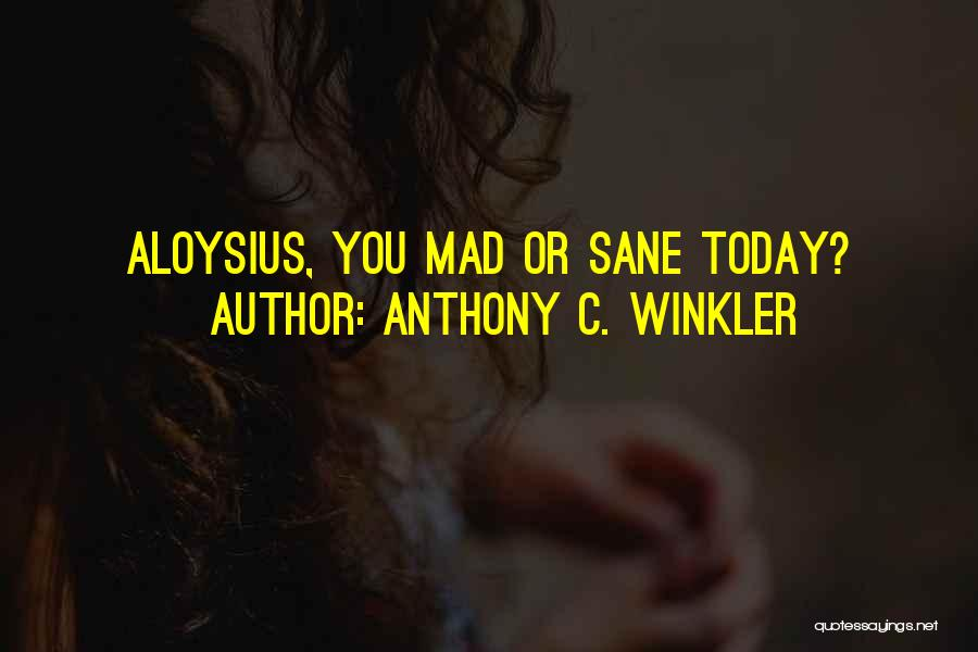 You Mad Quotes By Anthony C. Winkler