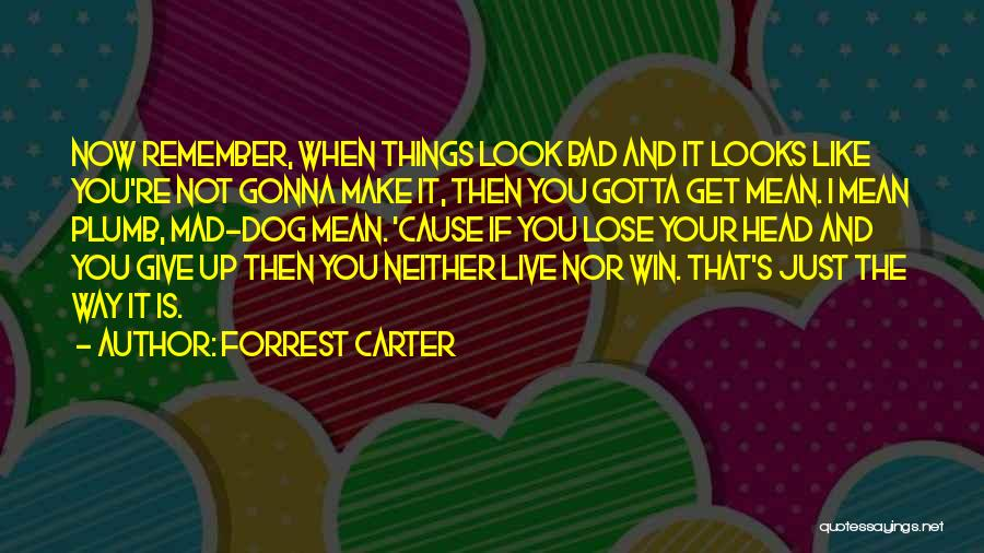 You Mad Quotes By Forrest Carter